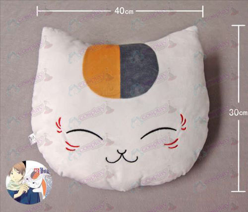 Professor gato Pillow